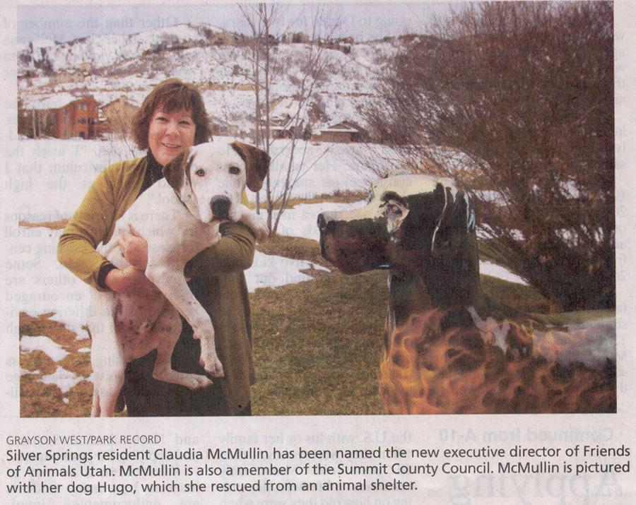 2010-Dec-15-McMuillin picked to lead FOA