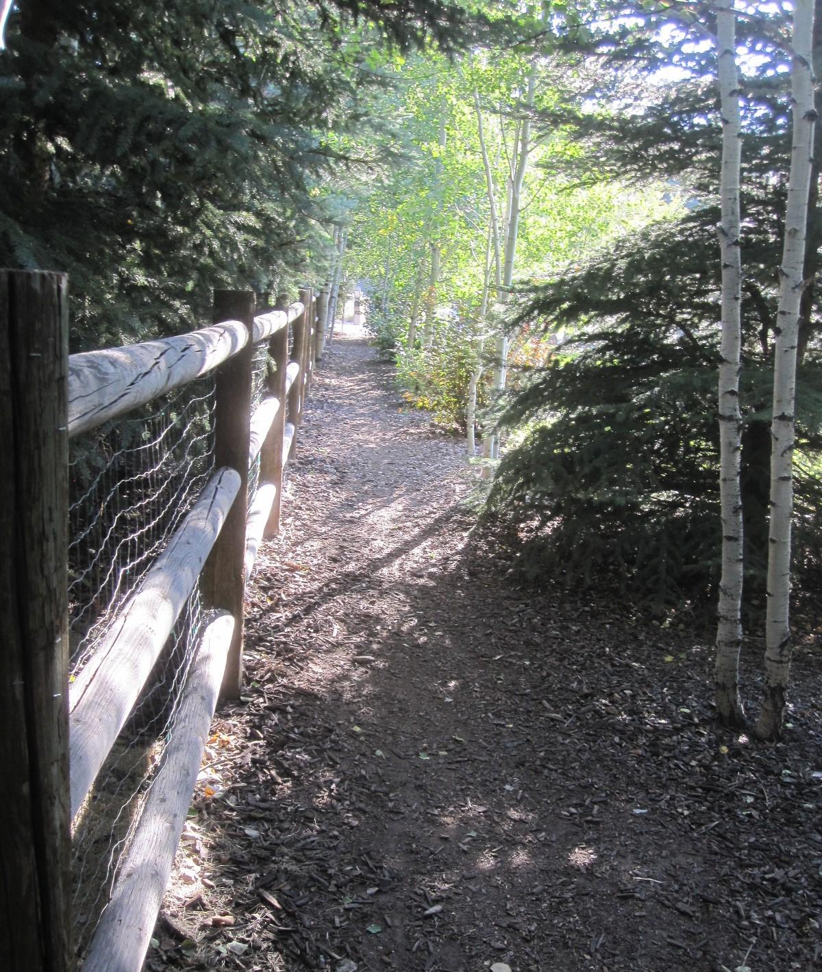 Silver Springs Silvers: Silver Springs Community-Walkway Willow Loop To Silver