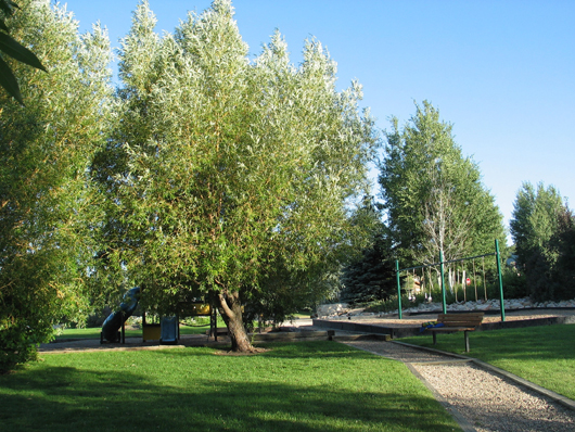 Silver Springs Community Park - center - 2008
