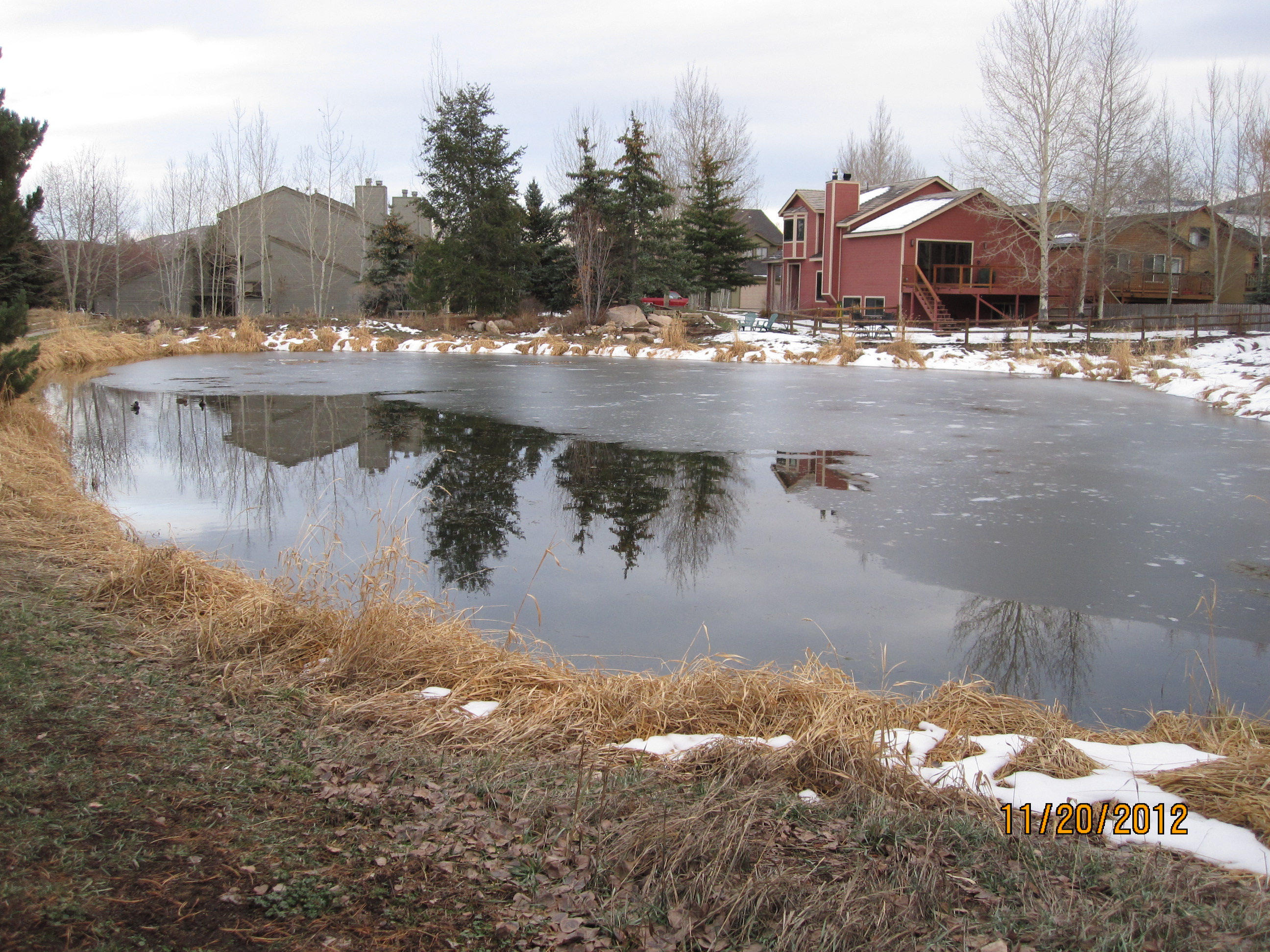 Silver Minnow Pond in late fall