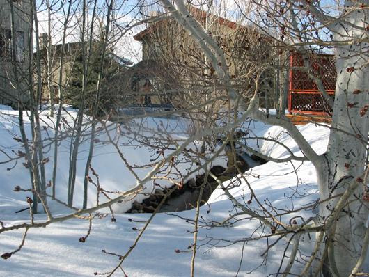 Stream in winter 3-2008