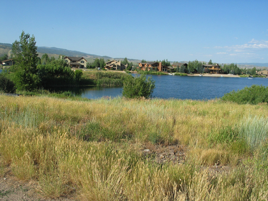 Parcel R - crescent on west of lake - 2008