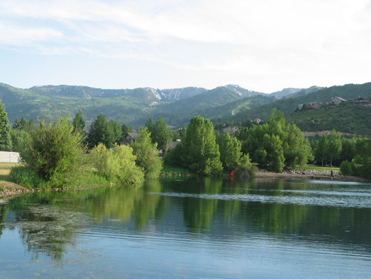 South beach of Silver Willow Lake - trees muffle noise and create privacy