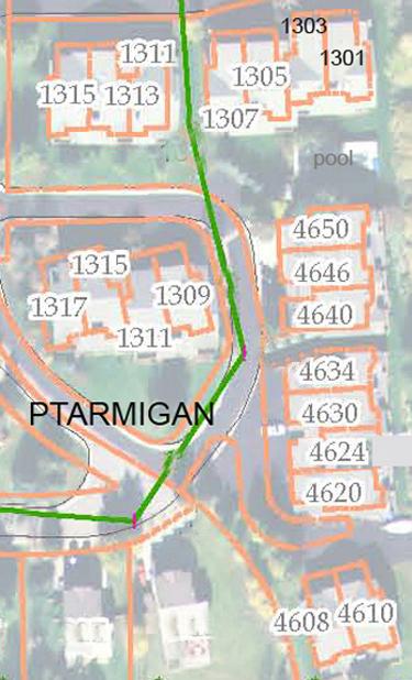 Ptarmigan - aerial