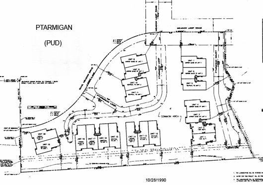 Ptarmigan - plat map