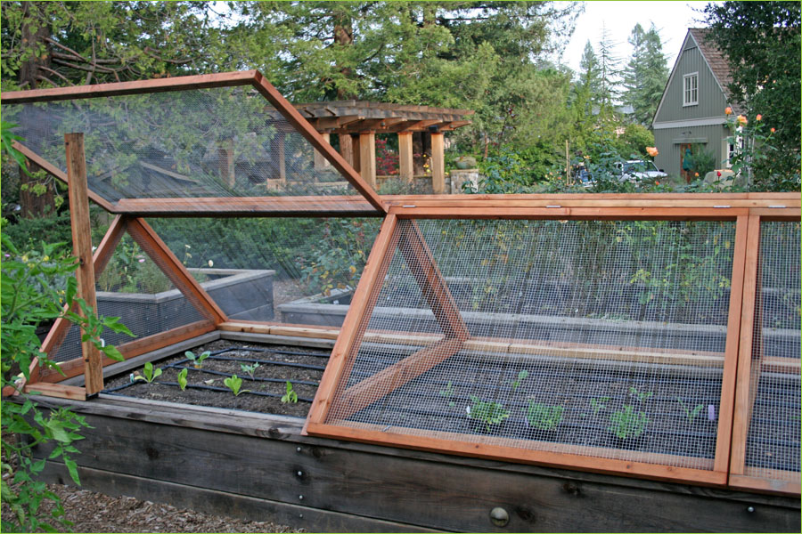 Marvelous Walled And Some Screen Frame Raised Bed Garden