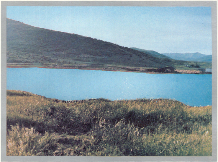 silver-willlow-lake-before-houses
