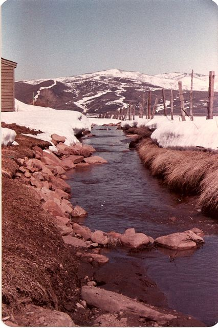 Stream between Silver Springs and Willow Creek in Spring of 1984